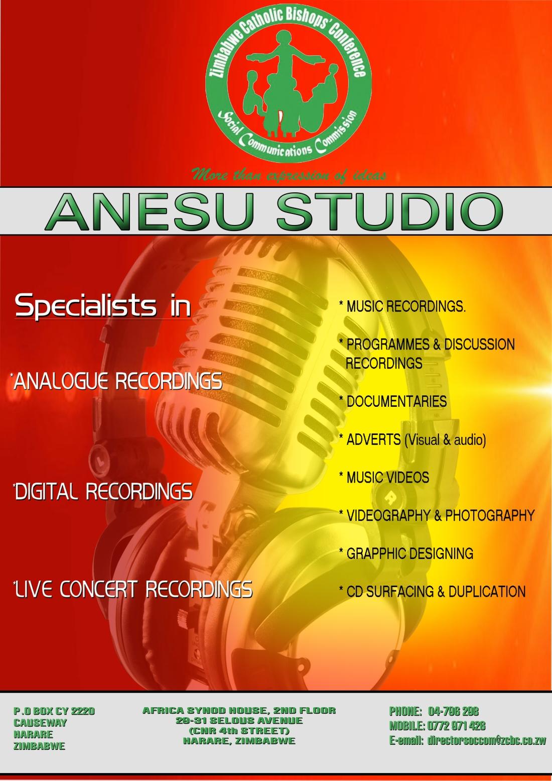 ANESU STUDIOS  .jpg