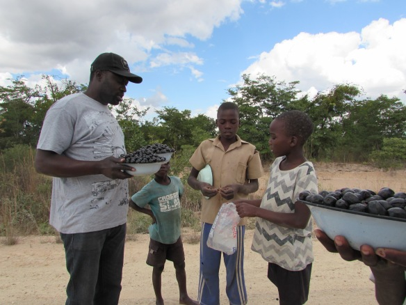 Mr. Robert Chukucha negotiates the price of tsubvu with the young entreprenours..JPG