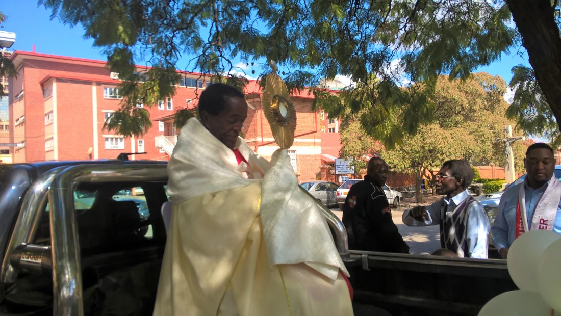 Fr. Dandiro leading a group of Catholics during the procession.